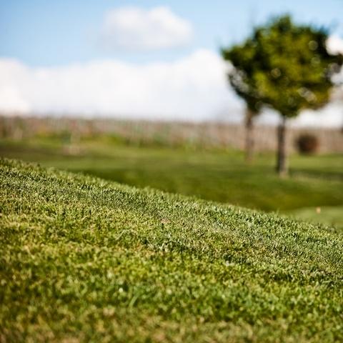 golf-des-vigiers-france_7203046176_o