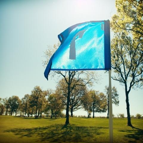 golf-des-vigiers-france_7203047974_o