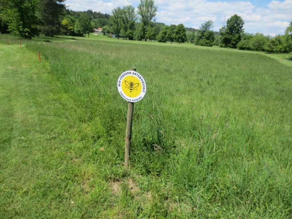 Der GC Ulm hat im Rahmen des Projektes eine Orchideenwiese am Abschlag der Bahn 18 angelegt. (Foto: © Dr. Gunter Hardt)