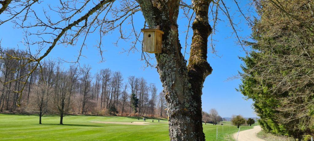 Neben Klimaneutralität ist das Pilotprojekt Biodiversität ein weiteres Umweltthema für den Golfclub auf der Reutlinger Alb. Mit Nistkästen, Steinhäufen und Totholzbereichen wird ein Beitrag für die Artenvielfalt geleistet  - © Golfclub Reutlingen-Sonnenbühl e.V.